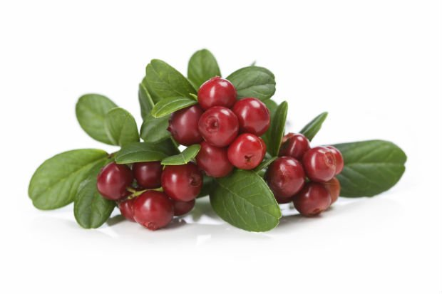 Cranberry - Foto Getty Images