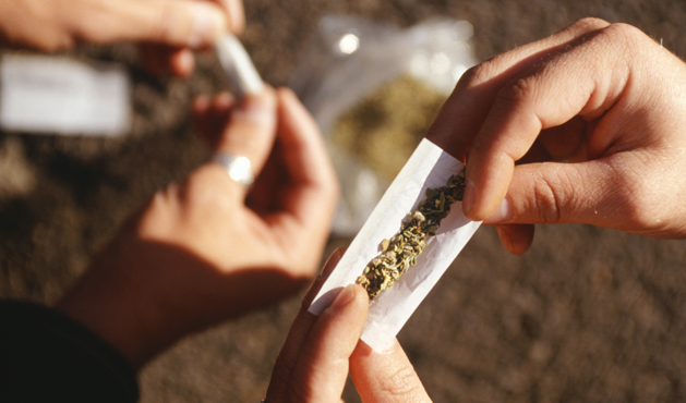 maconha - foto: getty images